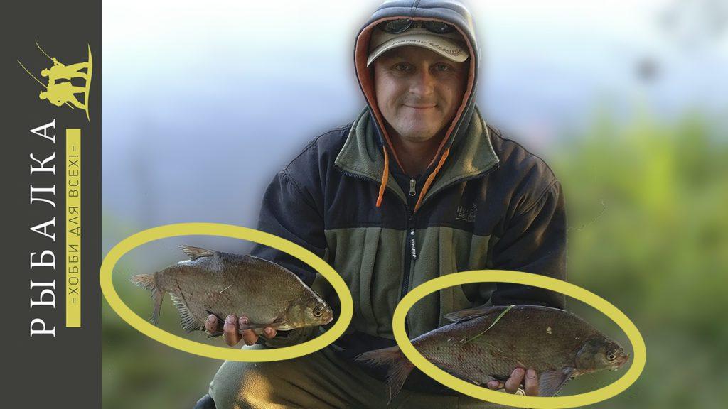 Ночная рыбалка на фидер на Свири - выделены лещи