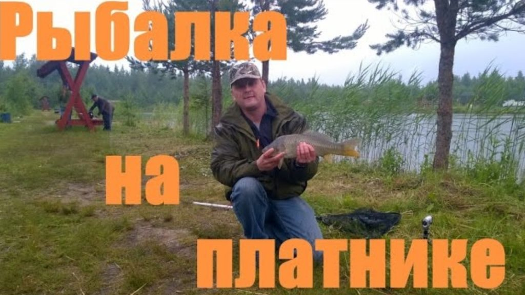 Рыбалка на платнике
