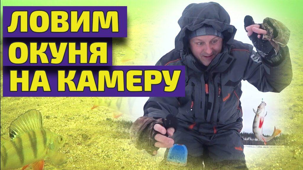 Рыбалка зимой на окуня на камеру язь 52